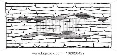 Geological Vein, illustration showing horizontal gash veins (shaded) within galena limestone (unshaded), vintage engraved illustration. Trousset encyclopedia (1886 - 1891).