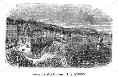 Promenade des Anglais ( Englishmen Walkway) in Nice, France, vintage engraved illustration. Trousset encyclopedia (1886 - 1891).
