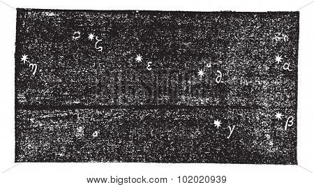 Grande Ourse (Ursa major), vintage engraved illustration. Trousset encyclopedia (1886 - 1891).