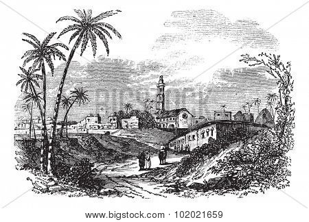 Gaza or Gaza City in Palestine, during the 1890s, vintage engraving. Old engraved illustration of Gaza with people and trees in front. Trousset encyclopedia (1886 - 1891).