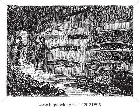 Catacomb and Saint Thraso Saint Saturninus or ossuary, Rome, Italy vintage engraving. Old engraved illustration of catacombs and Saint Thraso Saint Saturninus, 1890s. Trousset encyclopedia 1886 - 1891