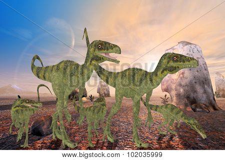Juravenator Dinosaurs
