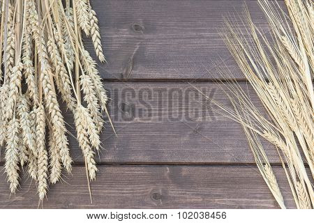 Barley And Wheat Lying On A Wooden Desk