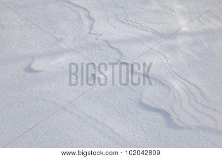 Snow crust