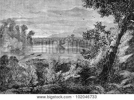 The banks of the largest lake broods, vintage engraved illustration. Journal des Voyage, Travel Journal, (1880-81).