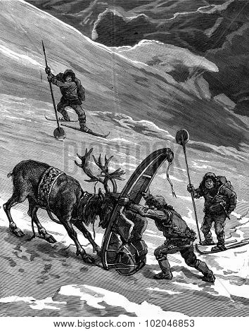 Lapps. The reindeer movements sometimes cranky, vintage engraved illustration. Journal des Voyage, Travel Journal, (1880-81).