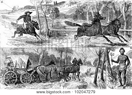 the race for wild horses, Fig 5 the coach stopped by ice water, fig 6 the bearer of native letters, vintage engraved illustration. Journal des Voyages, Travel Journal, (1879-80).