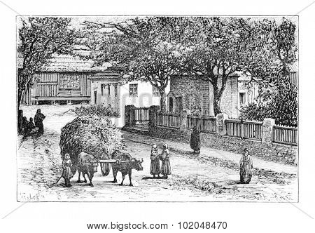 A Street in Zugdidi, Georgia, drawing by Taylor based on a photograph by Ermakoft, vintage illustration. Le Tour du Monde, Travel Journal, 1881
