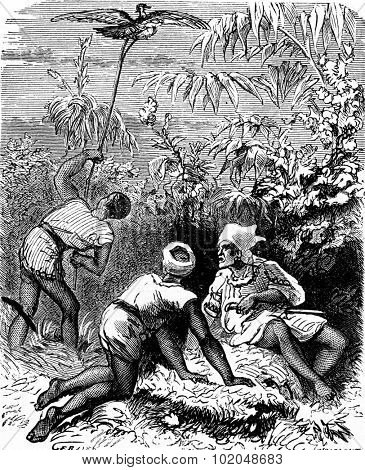 The dramas of India. In the thick tall grass, three Indians, vintage engraved illustration. Journal des Voyages, Travel Journal, (1879-80).