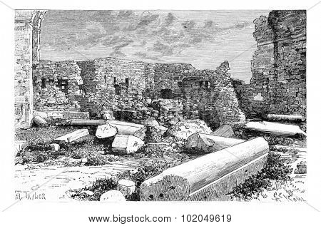 Pink Syenite Columns of the Crusader Cathedral Ruins in Tyre, Lebanon, vintage engraved illustration. Le Tour du Monde, Travel Journal, 1881