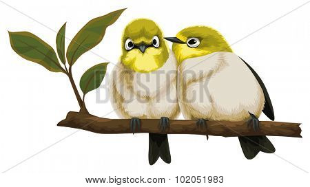 Vector illustration of lovebirds perching on tree branch.