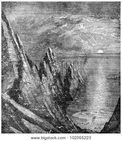 Guano, vintage engraved illustration.