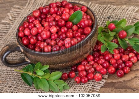 Lingonberries Rustic Still Life