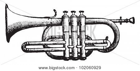 Cornet piston, vintage engraved illustration. Industrial encyclopedia E.-O. Lami - 1875.