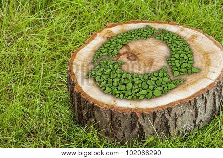 tree stump on the green grass with recycle symbol