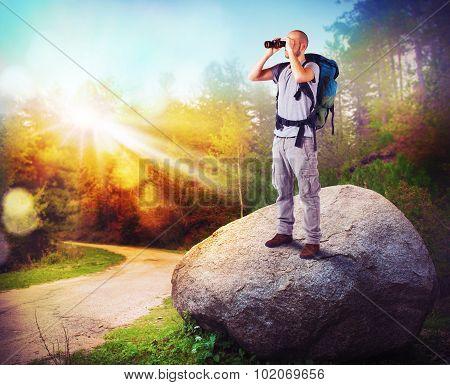 Woods explorer
