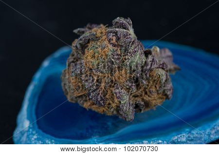 Grandaddy Purple Medicinal Marijuana