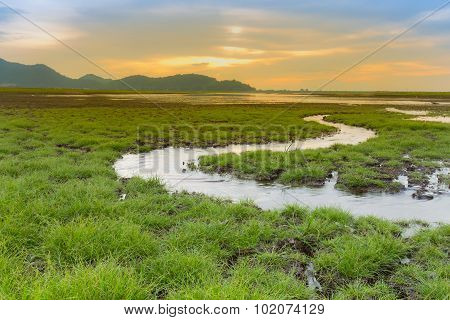 Small water way curved on small grass land with mountain skyline background