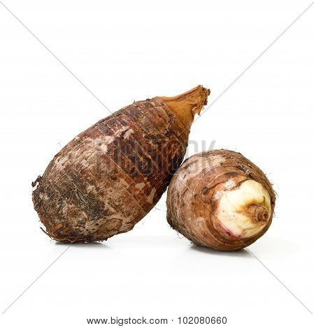 Fresh Taro Isolate On White Background