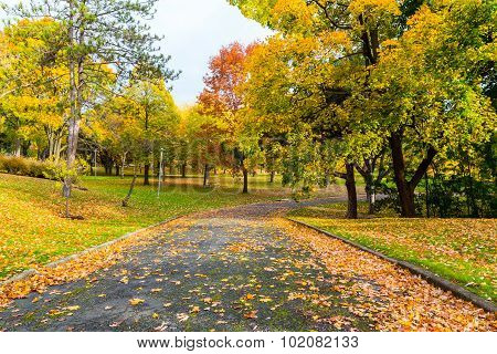 Pedestrian Path In Canada In The Fall