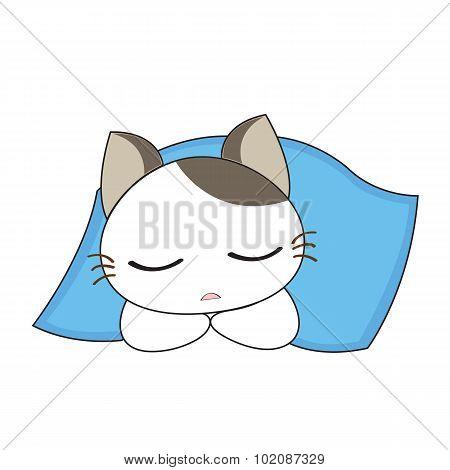 Cute Cat Character