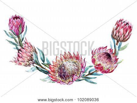 Watercolor tropical protea wreath