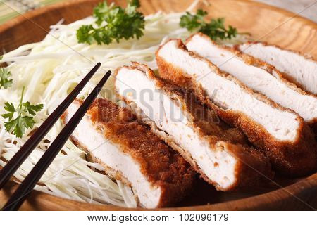 Tonkatsu Japanese Breaded Deep Fried Pork With Cabbage Macro. Horizontal