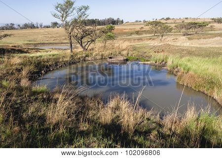 Waterholes Rural Farming