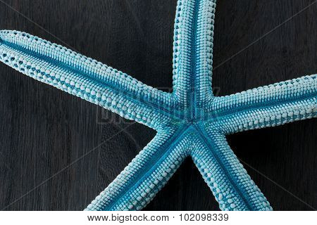 bue starfish on rustic wooden boards for background