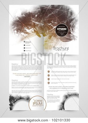Abstract professional Brochure, Template or Flyer Presentation with blank space for your text or image.