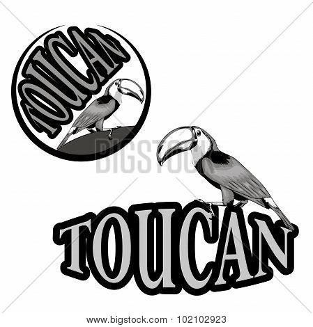 logo with the image of a toucan
