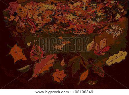 Grunge Autumn Texture