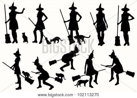 Collection witch silhouettes on the white background