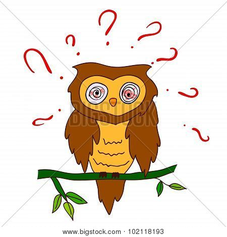 Confused Owl With Questions Vector