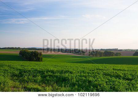 Amazing Landscape In Moravia