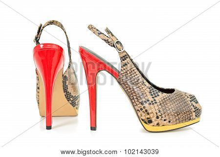 Snake Leather Skin Yellow And Orange Peep Toe Sling Back Pumps, Isolated On White Background