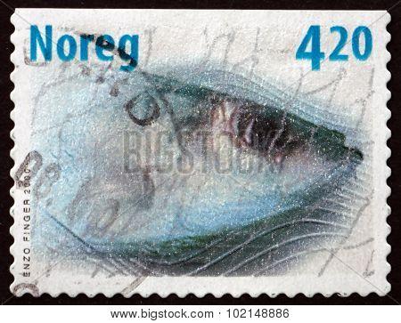 Postage Stamp Norway 2000 Atlantic Herring