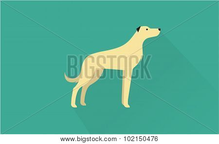 irish wolfhound icon