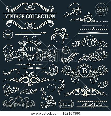 Vintage Set Decor Elements. Elegance Old Hand Drawing Set. Outline Ornate Swirl Leaves, Label
