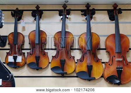 The image of a violins in a shop