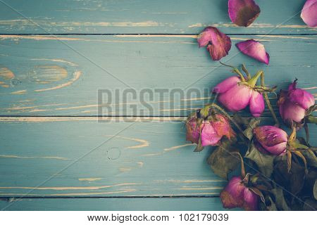 Wilted Flower Vintage Background / Wilted Flower Vintage / Wilted Flower On Vintage Background