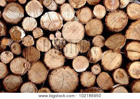 The Fire Wood Combined In A Stack