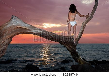 Woman In Bikini Watching Sunset