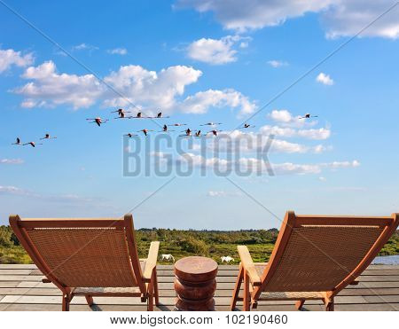 Flock of pink flamingos in a free flight. Summer evening in the Camargue national park. Rhone Delta, Provence. Sunbeds for birdwatching