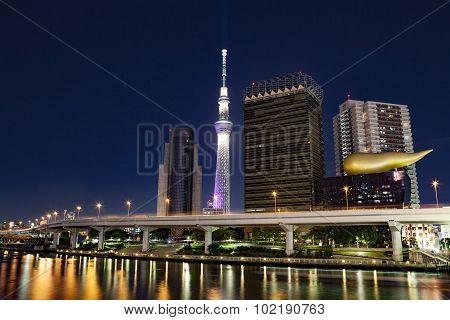 Tokyo skyline night.