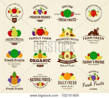 Fruits Labels And Design Elements