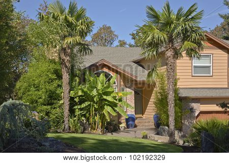 Tropical Home With Palm Trees And Banana Tree.