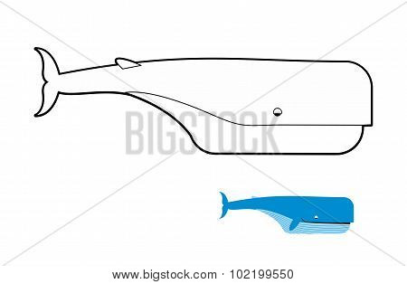 Sperm Whale Coloring Book. Blue Whale Vector Illustration