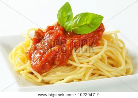 detail of fresh pasta topped with tomato sauce, leaves of basil and grated parmesan cheese
