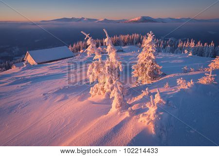 Frosty morning in mountains. Colorful sunrise. Winter landscape. Christmas view